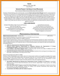 Plain Text Resume Examples Plain Writing Cover Letters