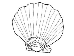 Small Picture Free Printable Seashell Coloring Pages For Kids