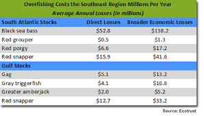 New Study Overfishing Costs Southeast And Gulf Regions