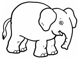 1024x768 zoo animal coloring pages preschool gallery for gt pictures of