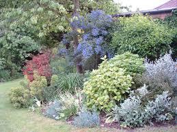 Small Picture Garden Design Garden Design with Shady Woodland Garden Larkspur