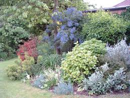 Small Picture Garden Design Garden Design with Woodland Garden Design Ideas