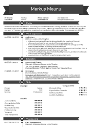 Auditing Resumes Resume Examples By Real People Audit Intern Resume Example