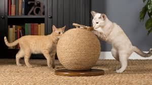 modern pet furniture. Modern Cat Furniture Pet