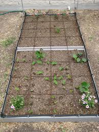 drip system for garden. Drip Irrigation Garden Design New Systems Brilliant System For
