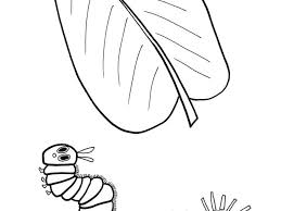 Coloring Pages Hungry Caterpillar Butterfly Coloring Page Valid