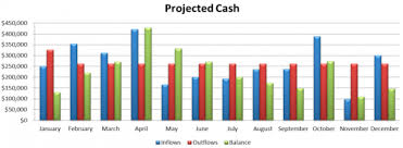 The Importance Of Cash Projections Nonprofit Accounting Basics