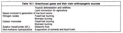 essay on global warming and greenhouse effect greenhouse gases