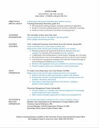School Bus Driver Resume Sample Camelotarticles Com