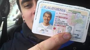 Fake Id's Education Aren't Think Harmless You As News