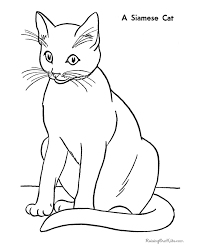 Cat Coloring Pages Letscoloringpagescom Siamese Cat Free