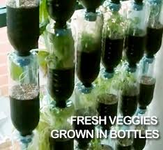 Small Picture Recycled Plastic Bottles Awesome Vertical Vegetable Garden