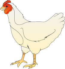free chicken clipart. Beautiful Clipart Image Chicken Clip Art Vector Online Royalty Free And Free Clipart C