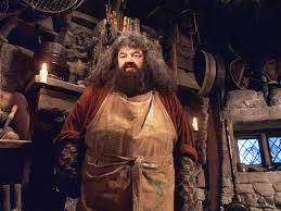 Image result for rubeus hagrid