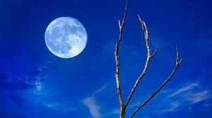 Αποτέλεσμα εικόνας για μπλε φεγγάρι
