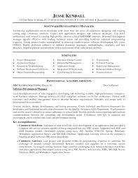 Software Development Manager Resume Essayscope Com