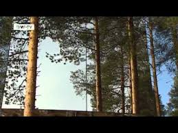 invisible tree house hotel. Invisible Tree House Hotel H