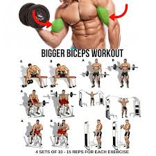 Biceps Exercise Chart Best Easy Way How To Get Bigger Arms At Home How To