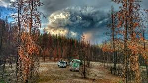 Bearskin Fire Information Inciweb The Incident Information System