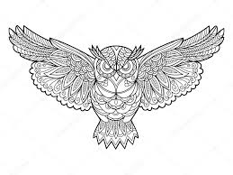 owl coloring book for s vector stock vector