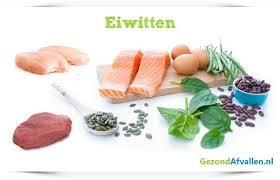 vetten eiwitten koolhydraten