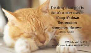 Loss Of A Cat Quotes New Pet Loss Quotes Center For Pet Loss Grief