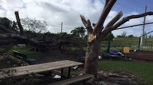 China Kitchen Palm Beach Gardens Tornado Confirmed Ripped Through Miami Springs Virginia