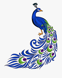 Peacock Design Pictures Peacock Clipart Peacock Design Peacock Peacock Design