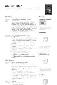 Digital Marketing Resume Template Digital Marketing Resume Samples