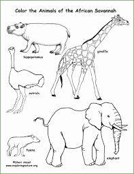 6 Afrikaanse Savanne Kleurplaten 76587 Kayra Examples