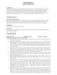 Credit Analyst Resume Example Financial Analyst Resume Sample Sample Professional Resume