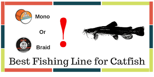 10 Best Fishing Line For Catfish From All Types Of Line