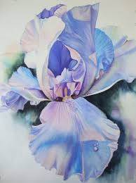 iris original painting watercolor painting original watercolor