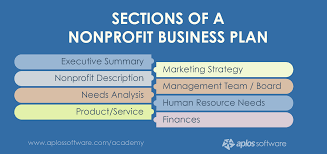sample nonprofit business plan business plan for npo sample
