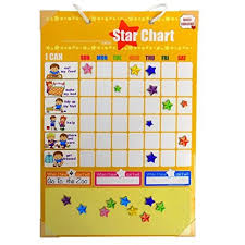 Autism Chore Chart Chore Charts Behavior Reward For Kids Magnetic Ideal For Rewarding Positive Behavior Training Toddlers And Children Autism By Good Choices