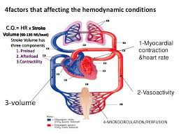 Review Of Hemodynamic Monitoring