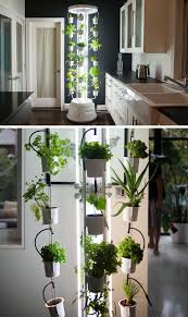 5 vertical vegetable garden ideas for beginners if you re short on space outside