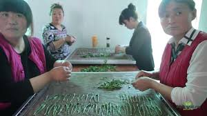 <b>Тайпин</b> Хоу Куй. Самый необычный <b>зеленый чай</b> Китая. Чайные ...