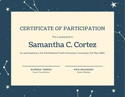 Certificate Of Participation Templates Customize 102 Participation Certificates Templates Online