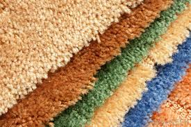 What Are The Best Carpets for Those With Allergies