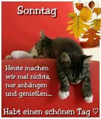 Pin Von Iris Auzinger Auf Tierbilder Guten Morgen Sonntag Sonntag