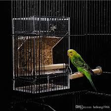 2019 glass bird feeder birds water feeders anti rejection spatter resistance parrot sprinkled automatic blanking acrylic birdcage 23fg ff from hehong1966