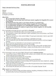 What Should A Birth Plan Look Like 22 Sample Birth Plan Templates Pdf Word Apple Pages