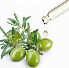 Plant Squalane - Freshine Chem