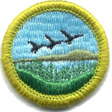 Emergency Preparedness Merit Badge Chart Merit Badge Boy Scouts Of America Wikipedia