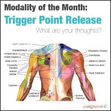 Muscle Pressure Points Chart Shoulder Trigger Points Chart Www Bedowntowndaytona Com