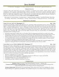 Credit Analyst Resume Sample Credit Analyst Resume Sample Best Of Brilliant Ideas Credit Risk 1