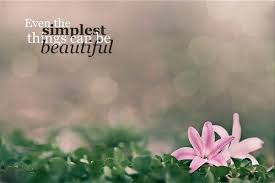 Nature Beauty Quotes Tumblr Best of Quotes About Being Naturally Beautiful On QuotesTopics