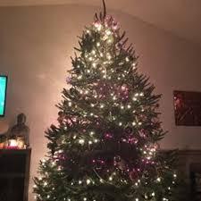 Dear Modern Farmer Is It Legal To Cut Down A Christmas Tree In A Christmas Tree Cutting Nj