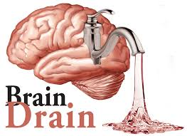 essay on brain drain in an essay on brain drain words essay on the problem of brain words short essay on